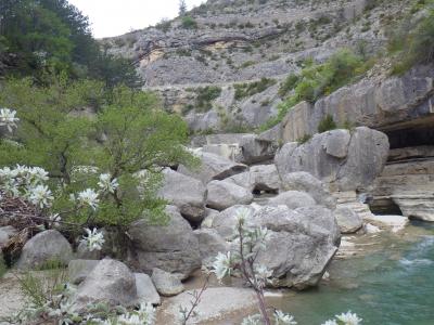 Gorges dela Méouge