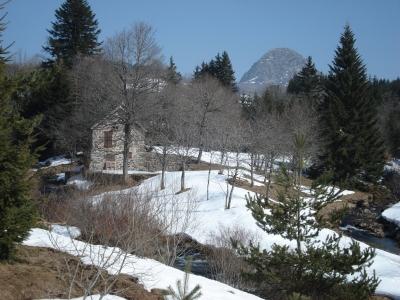 Mont Gerbier des Joncs au printemps